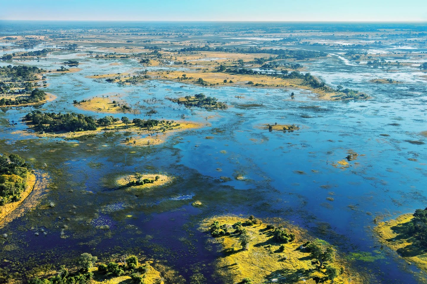 Record Rains in the Okavango 2017 but where is the flood ...